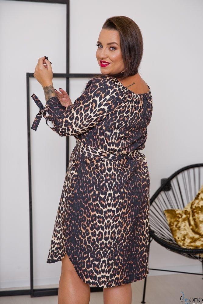 Sukienka AVERIA Plus Size Wzór 1